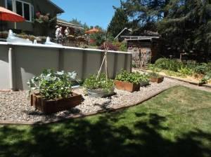 Soderberg-Garden-2015