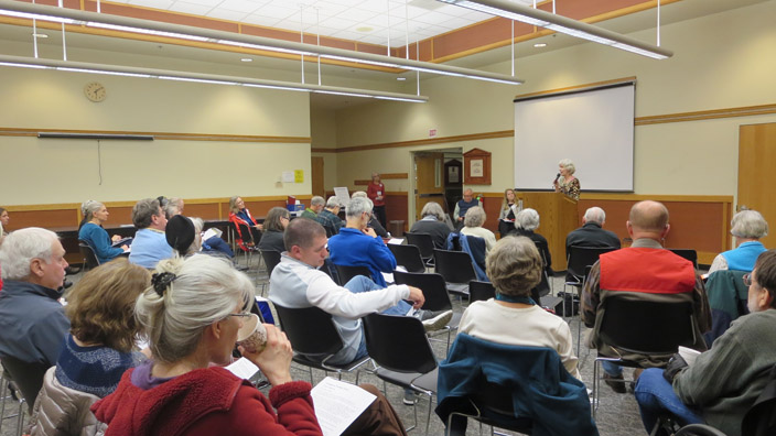 public-safety-mtg-2-18-15