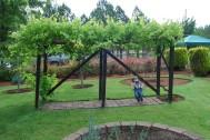 A - Garden-0003