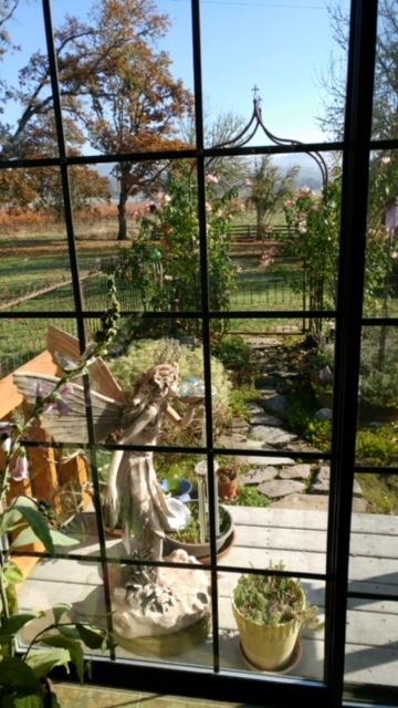 Baird-looking-thru-window